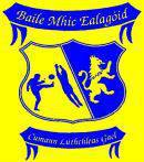 Ballymacelligott Club News 08/09/14