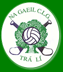 Na Gaeil Plans Big Cycle Fundraiser For Club