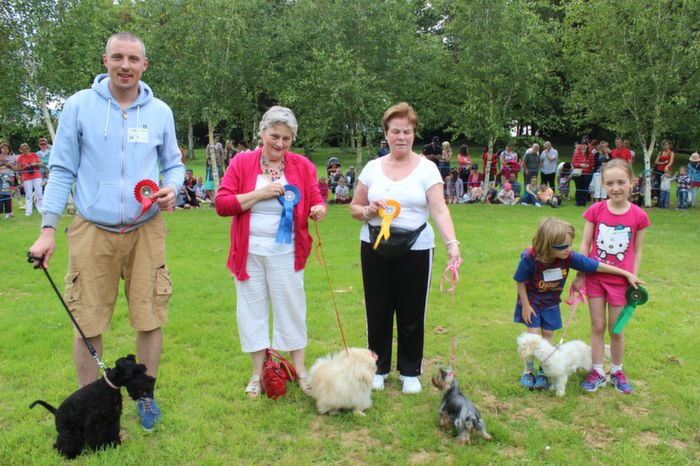 Kieran Donaghy with Bailey (1st), Margaret O'Sullivan with Doodles (2nd), Julie McMahon with Kerry (4th) and Sean and Orla Barry with Rosie-Daisy (3rd) in the Best Puppy category at the Dog Show in the Town Park on Saturday. Photo by Dermot Crean