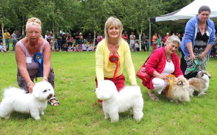 Mary Jennings with Classy Bawn (2nd), Jacinta Culnane with Callie (1st), Margaret O'Sullivan with Doodles (4th) and Linda Stack with Pebbles (3rd) in the Toy Category at the Dog Show in the Town Park on Saturday. Photo by Dermot Crean