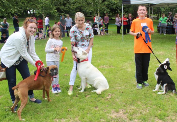Muireann Deane with Ruby (1st), Barbara Mol with Miley (4th) and Bradley McCarthy with Rocco (3rd) in the Large and Working Dog Category at the Dog Show in the Town Park on Saturday. Photo by Dermot Crean