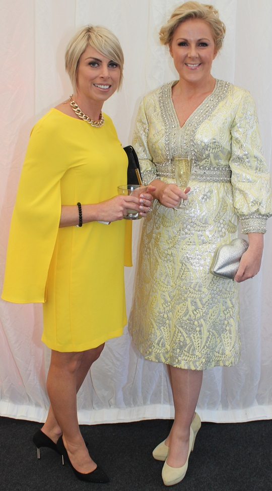 At the Rose Fashion show were, from left: Aileen Goodman and Mary Stapelton Foley. Photo by Gavin O'Connor.