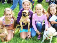 Abby, Emma, Ellie May and Lavinia with their dogs Billy, Ollie and Sally at the Paws and Tails Dog Show in the Town Park on Monday. Photo by Ryan Higgins