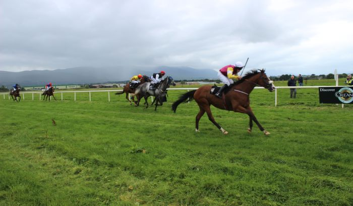 Action from the Kerry International Horse and Pony Race Meeting at Ballybeggan on Saturday. Photo by Dermot Crean