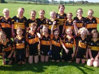Austin Stacks Juvenile Club News 08/09/14