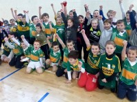 John Mitchels GAA News