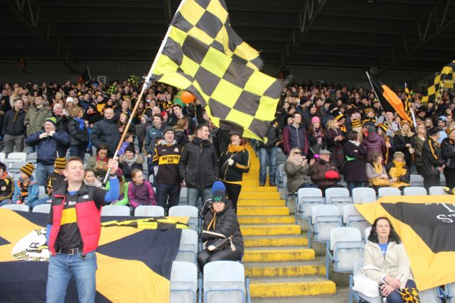 Seamus Smith waves the flag in front of the black and amber army in O'Moore Park. Photo by Dermot Crean