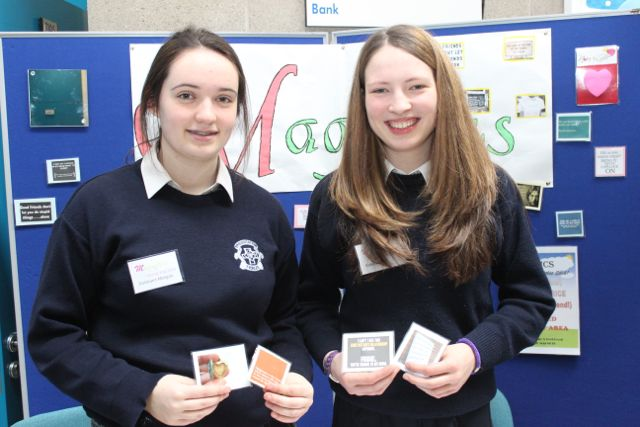 Presentation Tralee Secondary School students Doireann Morgan and Katie Ahern at the Kerry LEO Student Enterprise Awards at the ITT on Friday. Photo by Gavin O'Connor