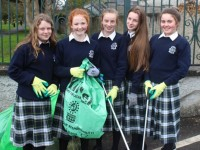 PHOTOS: Presentation Girls Doing Their Bit To Tidy The Town
