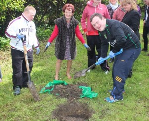 Hugh O'Brien and Brendan O'Sullivan dig the hole to plant the crabtree  watched by Joan O'Regan of  Team Bramble. Photo by Dermot Crean