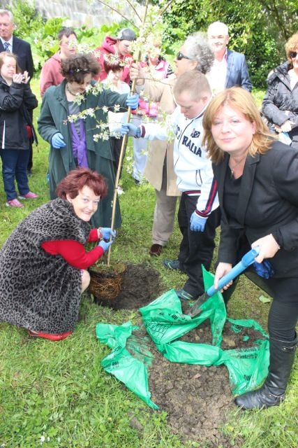 Gillian Wharton Slattery filling in the hole with helpers on Monday. Photo by Dermot Crean