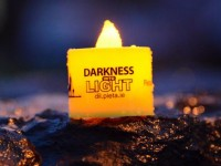 Tralee Bay Swimming Club To Hold 'Darkness Into Light' Swim