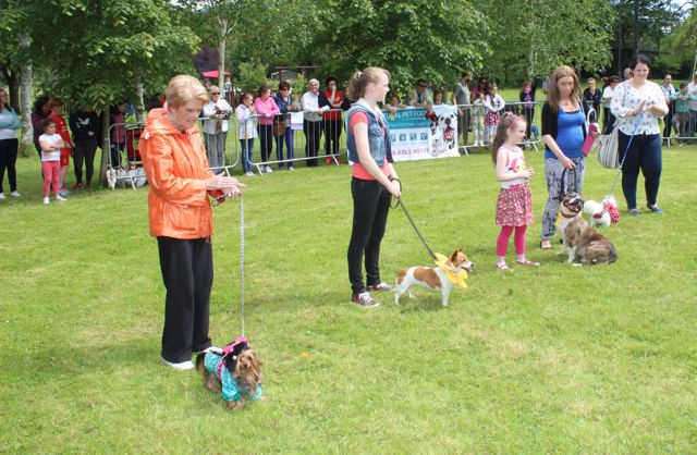 Lining up in the fancy dress category of the Féile na mBláth Dog Show in the Town Park on Saturday. Photo by Dermot Crean