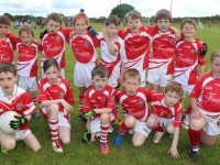 PHOTOS: Hundreds Enjoys Blitz At John Mitchels Grounds