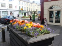 Call Goes Out For More Volunteers To Help Retain Tidy Towns Gold