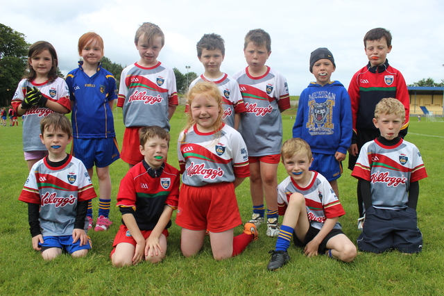 Kids enjoying the Ballymacelligott GAA Cúl Camp. Photo by Gavin O'Connor.