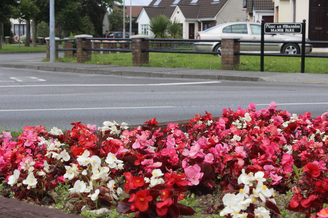 The residents in Manor have put in a lot of work to have the place looking well. Photo by Gavin O'Connor.