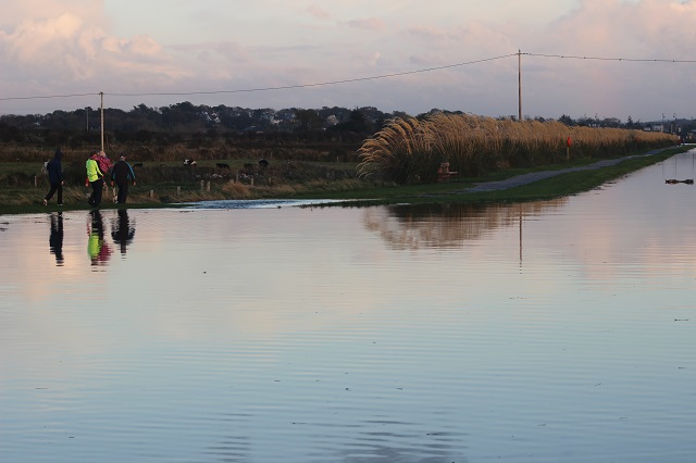 The sea level as it was yesterday evening at the canal had spilled over the edge at some points. Photo by Gavin O'Connor.