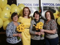 Kerry Volunteers Wanted For Daffodil Day