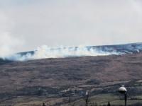 Gorse fire burning on Sliabh Mish Mountain on Tuesday