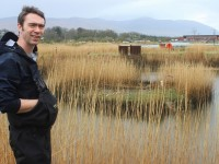 David McCormick of Tralee Bay Wetlands in front of the little island where a swans nest was destroyed over last weekend. Photo by Gavin O'Connor.