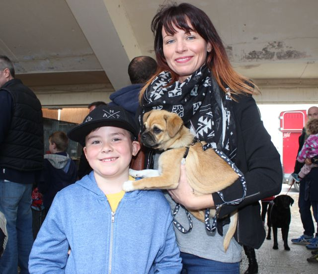 Jack and Gina Greer with Diego the dog at the Kingdom County Fair on Sunday. Photo by Dermot Crean