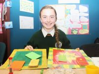 Tasha Mires from Killorglin Community College at Scifest in IT Tralee. Photo by Gavin O'Connor.