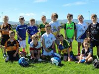 Young hurlers enjoying the Parnells GAA Cúl Camp. Photo by Gavin O'Connor.