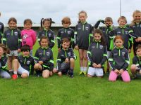 Young footballers at the St Pats GAA Cúl Camp. Photo by Gavin O'Connor.