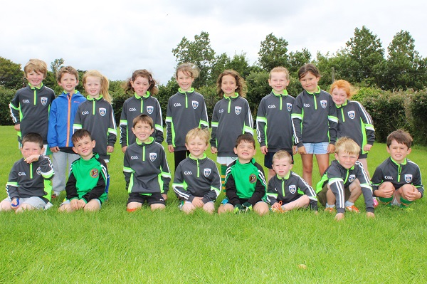 Kids taking part in the Churchill GAA Cúl Camp this week. Photo by Gavin O'Connor.