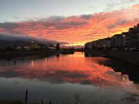 PHOTOS: Tralee On Social Media This Week