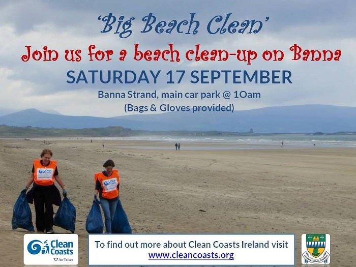 Big Beach Clean