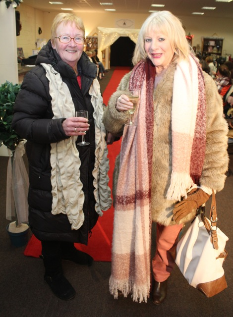 Liz and Mary McGreevy at the Adapt Fashion Show on Friday night. Photo by Dermot Crean