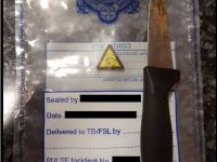 Gardaí Arrest Young Male After Finding Knife In His Possession