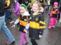 Austin Stacks GAA Club Juvenile News