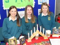 Jenny Fox, Amy O'Mahony, and Katie Nagel from the Presentation Secondary School, Miltown with their project at the Student Enterprise Awards on Friday. Photo by Lisa O'Mahony.