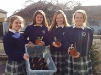 Presentation Students Reach National Final Of SEAI Competition