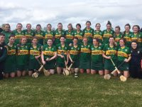 REPORT: Kerry Beat Cork To Win Munster Junior Camogie Title