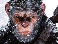 McCann At The Movies: 'Apes' Trilogy Comes To A Satisfactory End