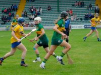 Camogie: Kerry Continue Winning Ways Against Roscommon