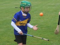 A young hurler shows his skills at the Tralee Parnells summer camp on Thursday morning. Photo by Dermot Crean