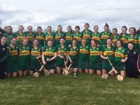 The Kerry Camogie Panel. (File Photo)