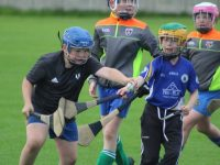 Action from the Tralee Parnells GAA Cúl Camp. Photo by Dermot Crean