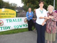 What The Tidy Towns Judges Said About Our 'Very Handsome Town'
