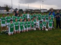 Na Gaeil Team that defeated Austin Stacks in the U13 Town Championship on Sunday