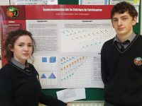Tralee Schools Well Represented At BT Young Scientists Exhibition