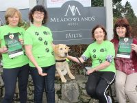 Ladies who are heading to Spain to walk part of the Camino de Santiago in aid of Irish Guide Dogs for the Blind, with 'Walker' the puppy, at The Meadowlands Hotel. From left; Anne Condon, Josephine Flood, Margaret O'Shea and Joan Hill. Photo by Dermot Crean