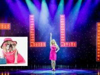 A dog is wanted to star in 'Legally Blonde The Musicial'.