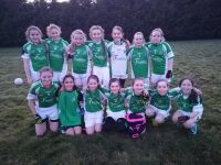 Na Gaeil U12 Girls team that played Kerins O'Rahillys in the Division 2 North Kerry League on Sunday.
