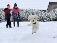 PHOTOS: The Last Of Your Fun In The Snow Images
